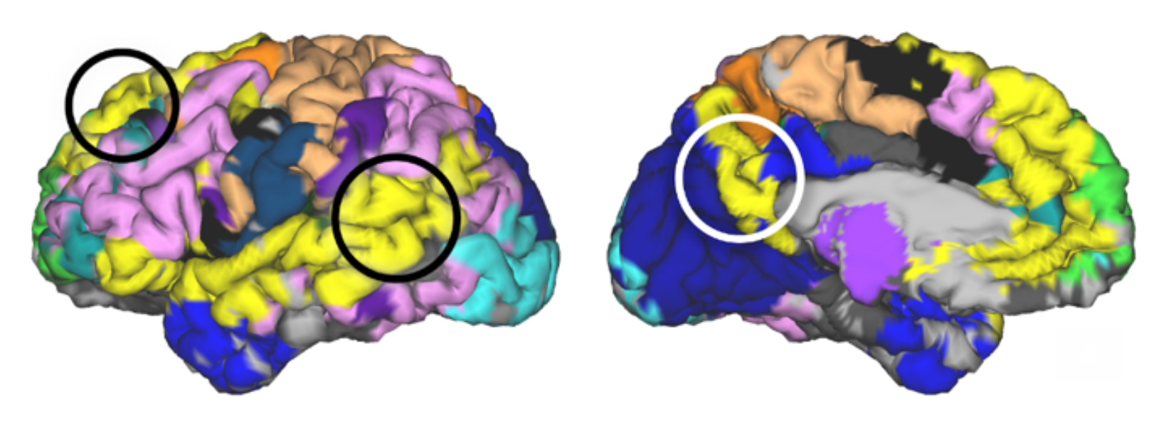 Neural Network Mapping